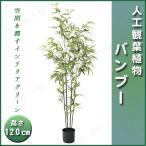 人工観葉植物 バンブーポット 120cm