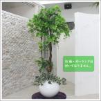 人工観葉植物 光触媒 ブドウの樹 170cm ガーデニング 造花 室内インテリア 果樹木 フェイクグリーン インテリアグリーン 消臭 抗菌 151cm