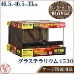 取寄品  爬虫類・両生類用ケージ グラステラリウム 4530 ペット用品 ペットグッズ 水槽 飼育ケース