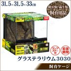 取寄品  爬虫類・両生類用ケージ グラステラリウム 3030 ペット用品 ペットグッズ 水槽 飼育ケース
