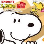 スヌーピー 2019年キャラクター雑貨福袋(アイテム数は、5点前後☆) SN-FUKU-2160
