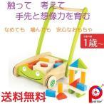 赤ちゃん 子供 木のおもちゃ 手押し車 つみき 知育玩具 PINTOY(ピントーイ) トドラーカートウィズブロックス
