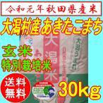 【28年産】秋田県大潟村産 あきたこまち 特別栽培米 玄米 30kg(送料込み・精米もできます)