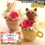 母の日 2021 プレゼント ギフトネコ カップ 猫