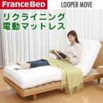 フランスベッド ルーパームーブ 電動リクライニングマットレス RP-1000N 38148100