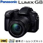 パナソニック ミラーレス一眼カメラ ルミックス LUMIX