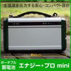PIF ポータブル蓄電池 エナジー・プロ mini DEAR LIFE LB-200