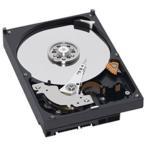 Western Digital WD10EZEX [1TB/3.5インチ内蔵ハードディスク] [7200rpm] WD Caviar Blueシシリーズ / SATA 6Gb/s接続