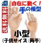 マネキン両手セット 関節付き自在に動く手の模型(小型:子供サイズ)