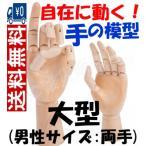 マネキン両手セット 関節付き自在に動く手の模型(大型:男性サイズ)