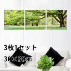 【30×30cm】アートパネル フレーム絵画 油絵風 3枚セット (大木 ナチュラルグリーン) 壁掛け インテリア絵画 ウォールデコ 自然風景 癒し 飾り