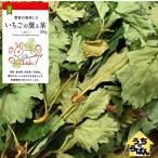 うさぎ 小動物用 おやつ 国産イチゴの葉 30g ドライベジ&フルーツ