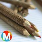 アイデア文具・雑貨 AD2 ネイチャーシャーペン alo-pnc-cl5 マルチカラー 木の色鉛筆10本セット(Mサイズ) / 高級 プレゼント おすすめ
