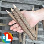 アイデア文具・雑貨 AD2 ネイチャーシャーペン alo-pnc-cl7 マルチカラー 木の色鉛筆10本セット(XLサイズ) / 高級 プレゼント おすすめ