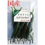 国産 生 青唐辛子 甘口 70g 生鮮品 千葉県産