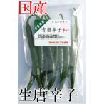国産 生 青唐辛子 辛口 50g 生鮮品 千葉県産