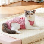 着心地いいおむつカバー3色組 (介護 ウェア 服 術後 猫 ペット 国産 日本製 ペット用品 ペットグッズ)