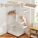 ケージ用ステップ ショート・1個 ※ケージは別売りです。猫 ケージ用ステップ 階段 取付簡単 ダンボール製 爪とぎ PEPPY ペピイ