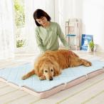 ショッピングステテコ さら肌敷きパッド Lサイズ ベッド マット 夏用 小型犬 中型犬 大型犬 犬用品 猫用品 ひんやり ペットグッズ 涼感加工 クール