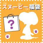 福袋 スヌーピー ぬいぐるみ ブラインドパッケージ 約45000円分 先行予約 1月4日発送 予約品