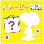 福袋 スヌーピー ぬいぐるみ ブラインドパッケージ 約25000円分 先行予約 2月1日発送 予約品