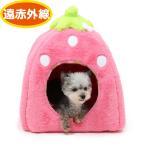 ペットパラダイス 遠赤 苺 ハウス 小(38cm)犬 猫 ベッド ベット ハウス 小型犬 あったか かわいい おしゃれ 可愛い