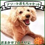 ショッピングペット ペット用品 おもちゃ 犬 猫 アソートおもちゃセット おしゃれ
