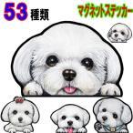 犬 ステッカー マルチーズ マグネット/可愛い 犬 車 冷蔵庫 オーダー グッズ 雑貨 プレゼント ドッグ オリジナル イラスト シルエット かわいい 顔