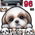 犬  ステッカー/シーズー64/犬/シール/ネーム入れ不可