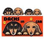 DOG IN THE CAR ステッカー ダックスフンド201 犬 シール  オーダー 可愛い 車  グッズ ギフト プレゼント ドッグ