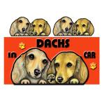 DOG IN THE CAR ステッカー ダックスフンド204 犬 シール  オーダー 可愛い 車  グッズ ギフト プレゼント ドッグ