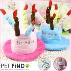 犬 誕生日  バースデイ 記念 写真 インスタ フェイスブック ツイッター 想い出 犬の帽子 イベント パーティー
