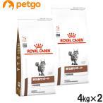 【2袋セット】ロイヤルカナン 食事療法食 猫用 消化器サポート 可溶性繊維 ドライ 4kg【送料無料】
