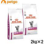 【2袋セット】ロイヤルカナン 食事療法食 猫用 腎臓サポートセレクション ドライ 2kg