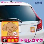おあり運転対策 ドライブレコーダー 搭載 マグネット 「うちの子」シリーズ ドラレコマグ 柴犬 プードル チワワ ダックス ポメラニアン シュナウザー