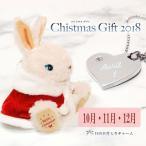 ショッピングクリスマスプレゼント クリスマス プレゼント 女性 子供 女の子 誕生日プレゼント クリスマスバニー ハート バースデイチャーム 10月 11月 12月
