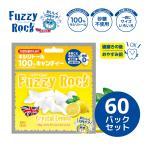 キシリトール あめ 100% キャンディー FuzzyRock レモン味 60パックセット タブレット 虫歯 甘い 歯磨き ノンシュガー 糖類 オフ 防災 歯 矯正