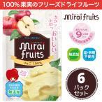 フリーズドライ フルーツ [りんご] ひと箱 6袋 セット mirai fruits(ミライフルーツ) 防災