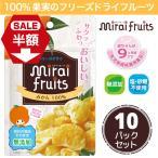 フリーズドライフルーツ mirai fruits ミライフルーツ 未来果実 みかん 13g×10袋 無添加 砂糖不使用 ベビーフード