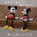 足ブラ ミッキーマウス・ミニーマウス TD-FD01・TD-FD02