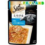 シーバアミューズ とろけるシーフードスープ お魚、しらす、蟹かま ( 40g )/ シーバ(Sheba) ( キャットフード ウェット )