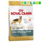 ロイヤルカナン ブリードヘルスニュートリション ジャーマンシェパード 成犬用 ( 12kg )/ ロイヤルカナン(ROYAL CANIN) ( ドッグフード ドライ )