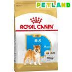ロイヤルカナン ブリードヘルスニュートリション 柴犬 子犬用 ( 3kg )/ ロイヤルカナン(ROYAL CANIN)