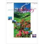 2019年カレンダー『アルプス』 壁掛けカレンダー 風景カレンダー 自然カレンダー 外国風景カレンダー