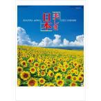 カレンダー 2021 壁掛け 風景 大判サイズ 美しき日本 日本風景 2021年カレンダー 令和3年 壁掛けカレンダー 12ヶ月 数字が見やすい 人気