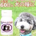 犬の瞳に ブルーベリー & ルテイン 60粒 犬用 目 国産 サプリメント