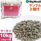 2種類の国産フードサンプル付 ビッグウッド ブリリア