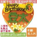 犬用ケーキ Lovina(ロビナ) ハート型バースデーケーキ お誕生日に プレゼントに