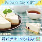 同梱・代引不可 送料無料 父の日 ギフト 「山田牧場」芳醇レアチーズケーキ YD-C1