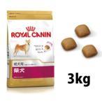 ロイヤルカナン 柴犬 成犬用(3kg)